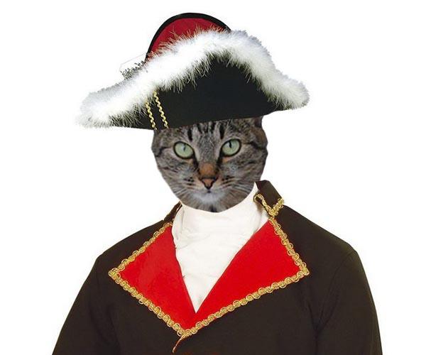 Наполеон боялся кошек